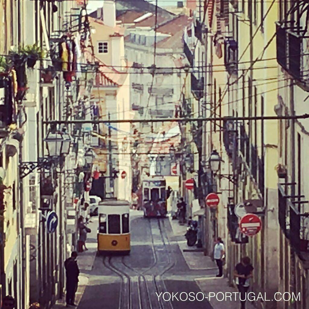 test ツイッターメディア - リスボンらしい風景、ビカのケーブルカー。 #リスボン #ポルトガル https://t.co/yAI8HOn9n4