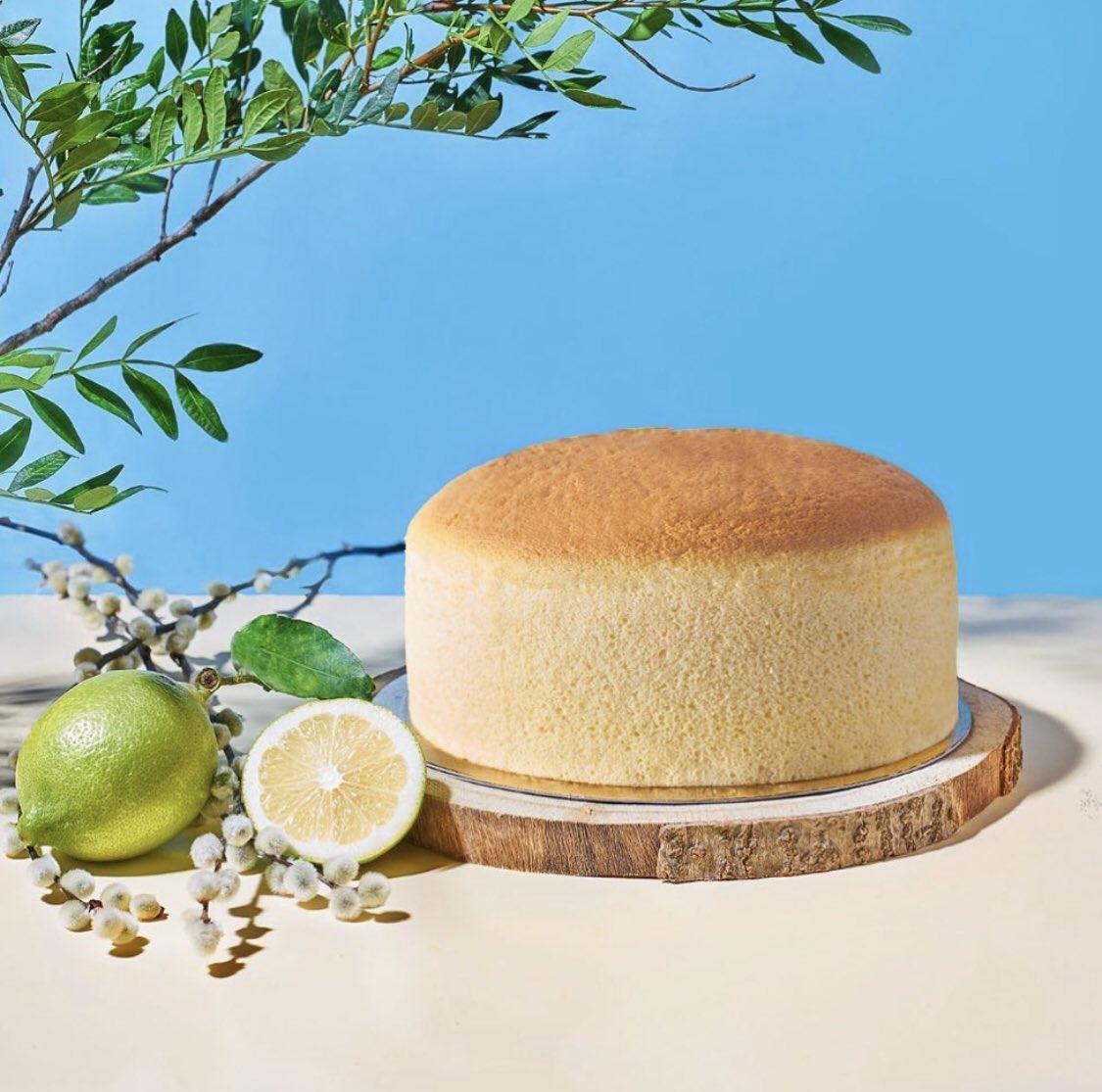 """Panda Patisserie on Twitter: """"RESERVA YA nuestra TARTA DE NAVIDAD o COTTON  CHEESECAKE en nuestra web⬇️ 🍰 Tarta de Navidad: 28,50€ [6-8por]/38,50€  [8-12 por] 🥧 Cotton cheesecake: 19,95€ [6-8 por] 🎄Tronco Navidad"""