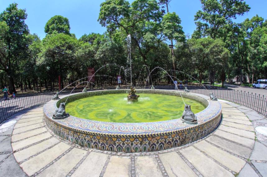 Bosque Chapultepec в Twitter La Fuente De Ranas Se Construyó En España En 1921 Originalmente Estaba En La Entrada Principal Del Bosque Pero Más Tarde Fue Reubicada En La Parte Trasera Del