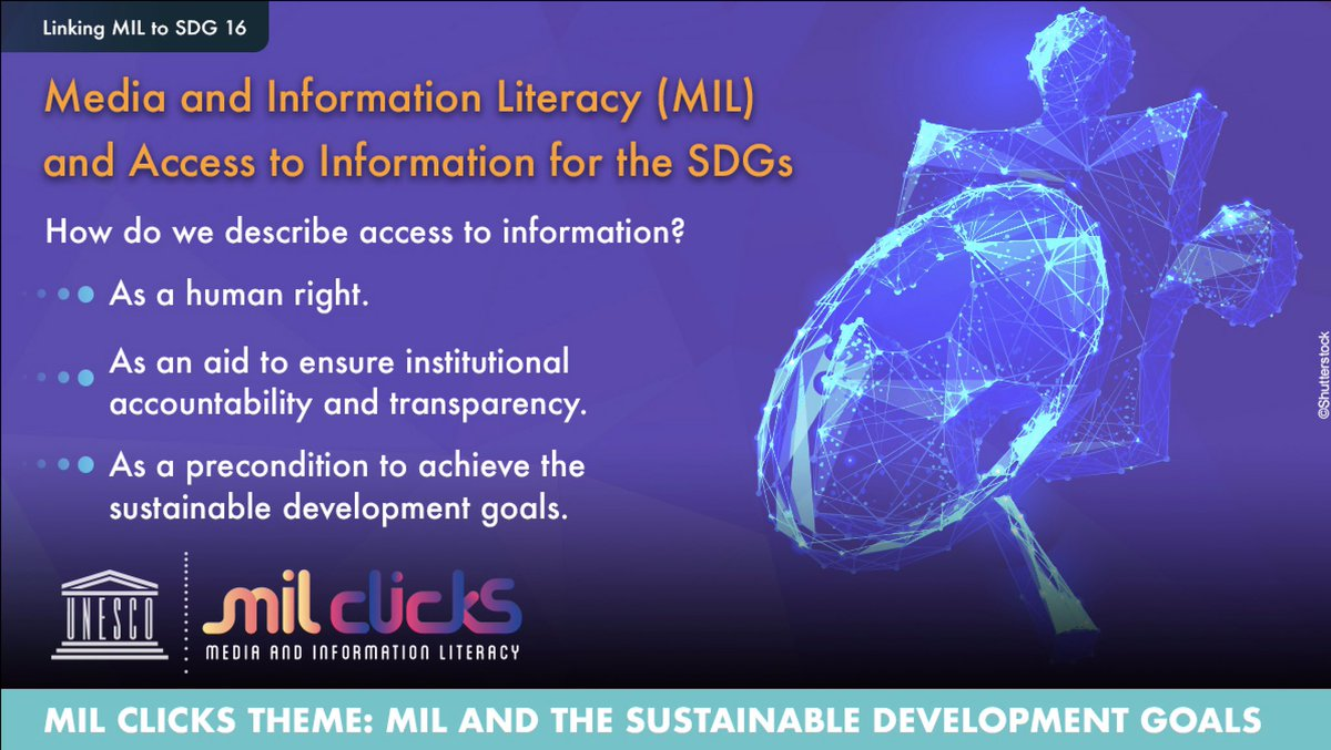To possess media and information literacy competencies enables access to information.  In addition, access to reliable health information saves lives.  How do you describe access to information?