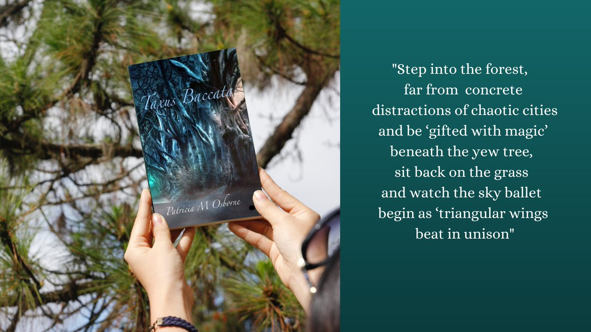 Love #nature #myth #trees? You'll love #TaxusBaccata  Check out some of the reviews on my website and order your signed copy.     @CHINDIAuthors  @hedgehogpoetry  @VerseOnWine  #IARTG  #pamphlet #MondayVibes