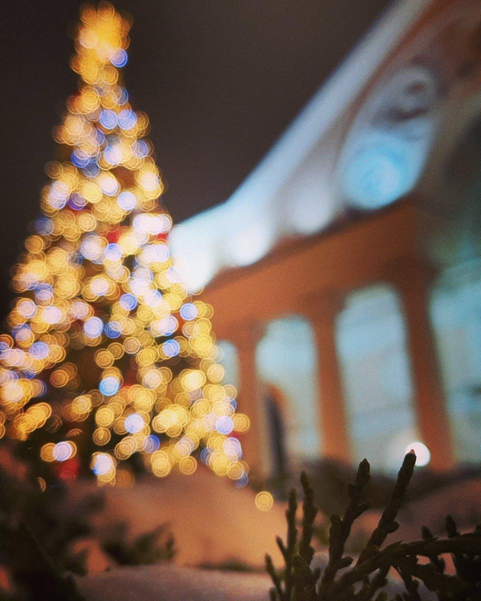 Люблю зиму за такие вот красочные пейзажи, полные ярких огней от няряженых к празднику елок. В этом есть что то уютное, несмотря на стужу  #vdnh #vdnhpark #NewYear #landscape #cristmastree #cristmas #holidays  #вднхмосква #вднхкаток #рождество #новогодняяелка #каникулы #новыйгод