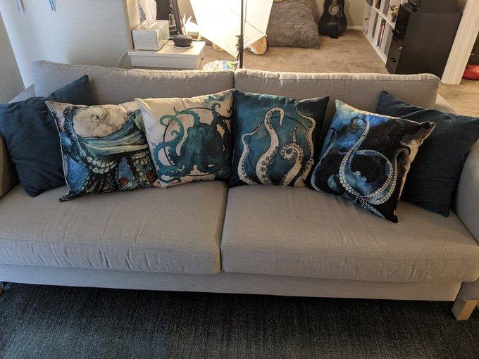 New pillows 🥰 https://t.co/Q7Ox23vbcL