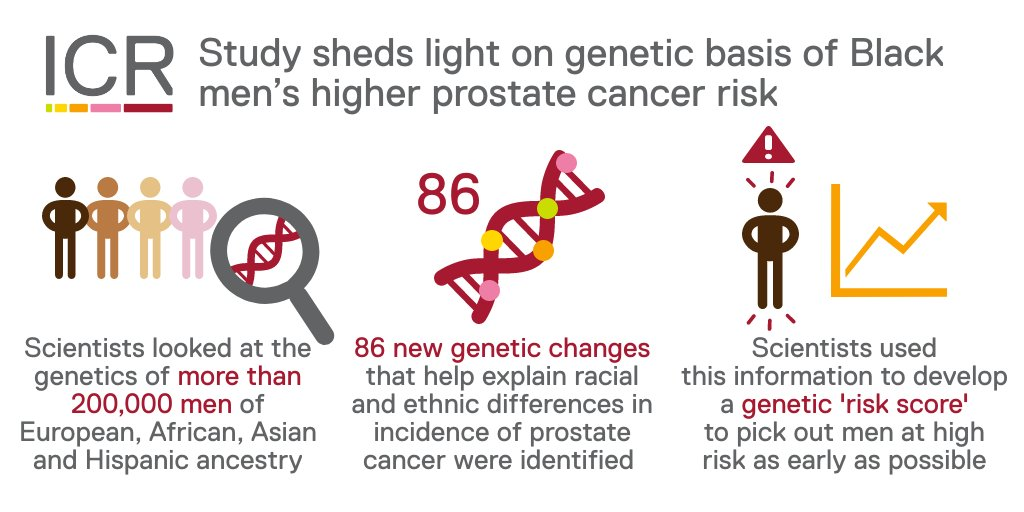 🔬NEWS: The largest and most ethnically diverse genetic analysis conducted in prostate cancer has revealed a genetic basis for the higher risk of the disease among Black men than in other racial groups.   Find out more: