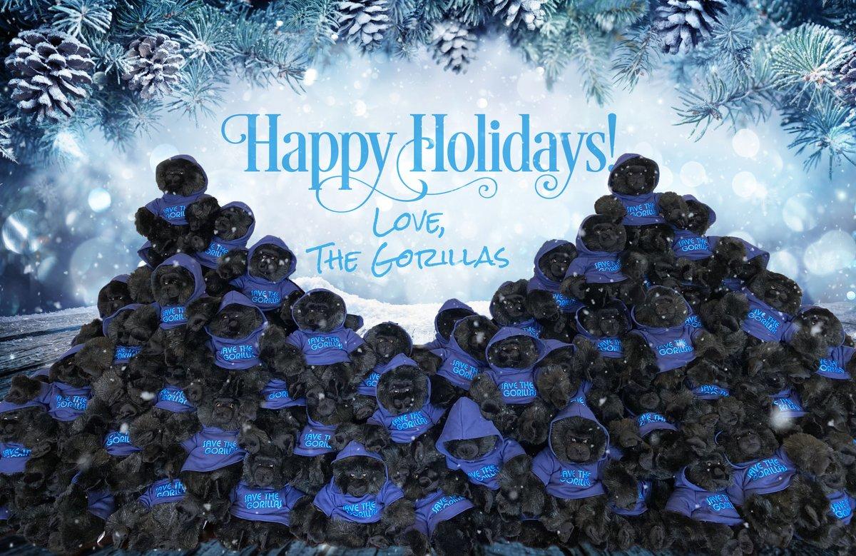 Wishing you a festive holiday season! –The Gorillas #happyholidays #weneedgorillas #gorilla #conservation #99gorillas #nooneblinked