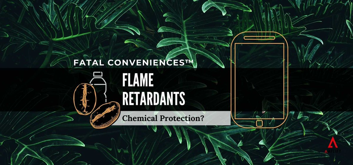 Are flame retardants actually protecting us from fire? Or are they slowly damaging our bodies? 🔥  Find out in the latest Fatal Conveniences™ segment -