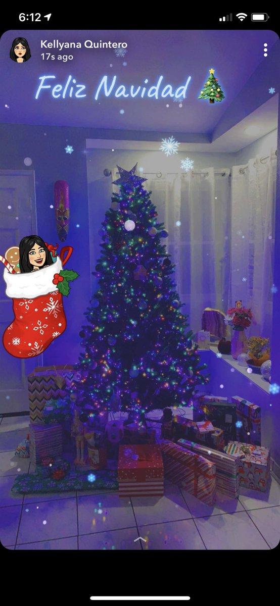 Feliz Navidad mi familia y amigos ❤️🌴🎄