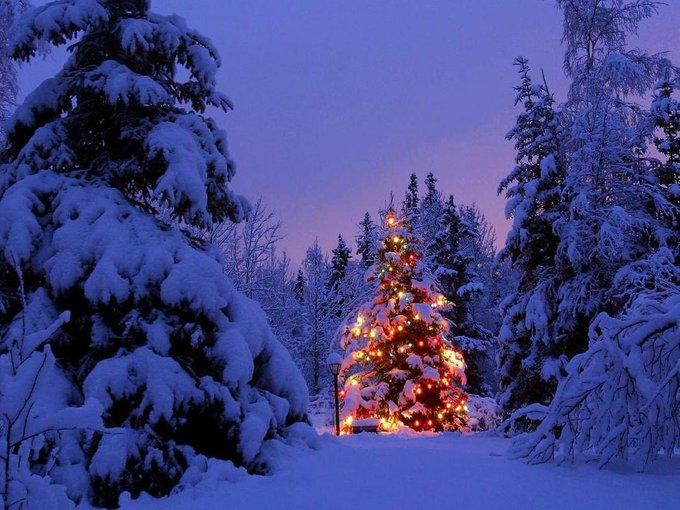 Merry Christmas https://t.co/NicqyX2Xr6