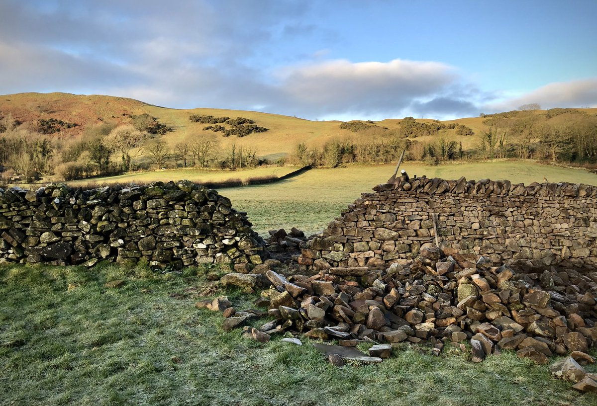 Uncle Arthur making good progress on the drystone wall rebuilding. Cold fingers this morning.