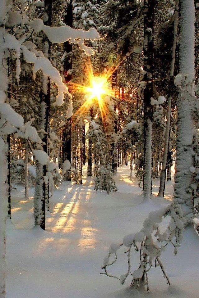 Elvira On Twitter Thank You So Much Good Morning Dear Sofia And All Friends Wonderful Tuesday Beautiful Winter And Happy New Year Https T Co 7xqj4r9mau Know that there is nothing better than waking up with you in mind, even after having spent the night thinking about you. twitter