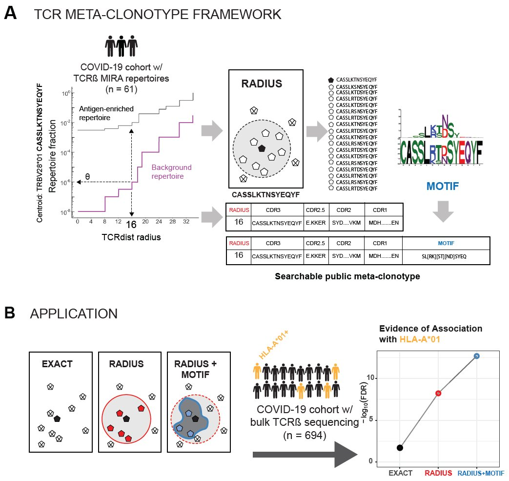 "Excited to share our #SARS_CoV_2 #TCR repertoire preprint! A framework for biomarker discovery w/ antigen-enriched TCR data w/ app to #sarscov2. #tcrdist3+#immuneRACE=TCR ""meta-clonotypes"" https://t.co/c850DiEp8b Thanks @PGTimmune @sschattgen @Liel_Cohen_  @aanaishe @jeremycfd https://t.co/N0ASIrtBwS"