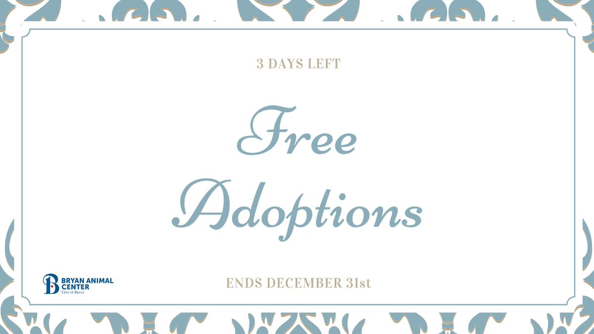 We have a lot of animals still waiting to go home this year! It's not to late to adopt this year, visit our website at   to submit your online application. You only have a few days left! Remember our special ends December 31st. #Adopt #Rescue #FreeAdoptions