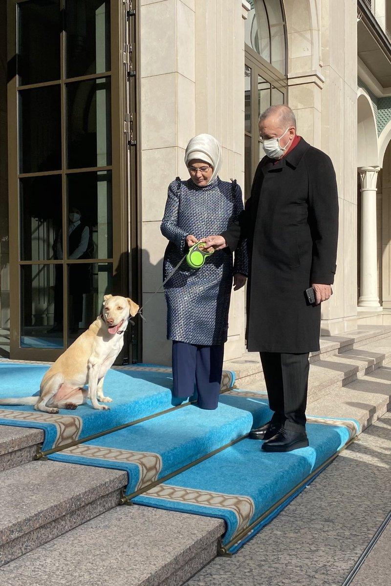 Bu sabah Cumhurbaşkanımızı Leblebi ile birlikte uğurladık. @RTErdogan