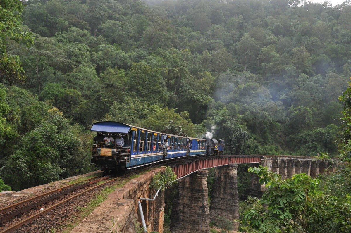 EqZxMEAUcAEri8y?format=jpg&name=medium - The Nilgiri mountain elephants