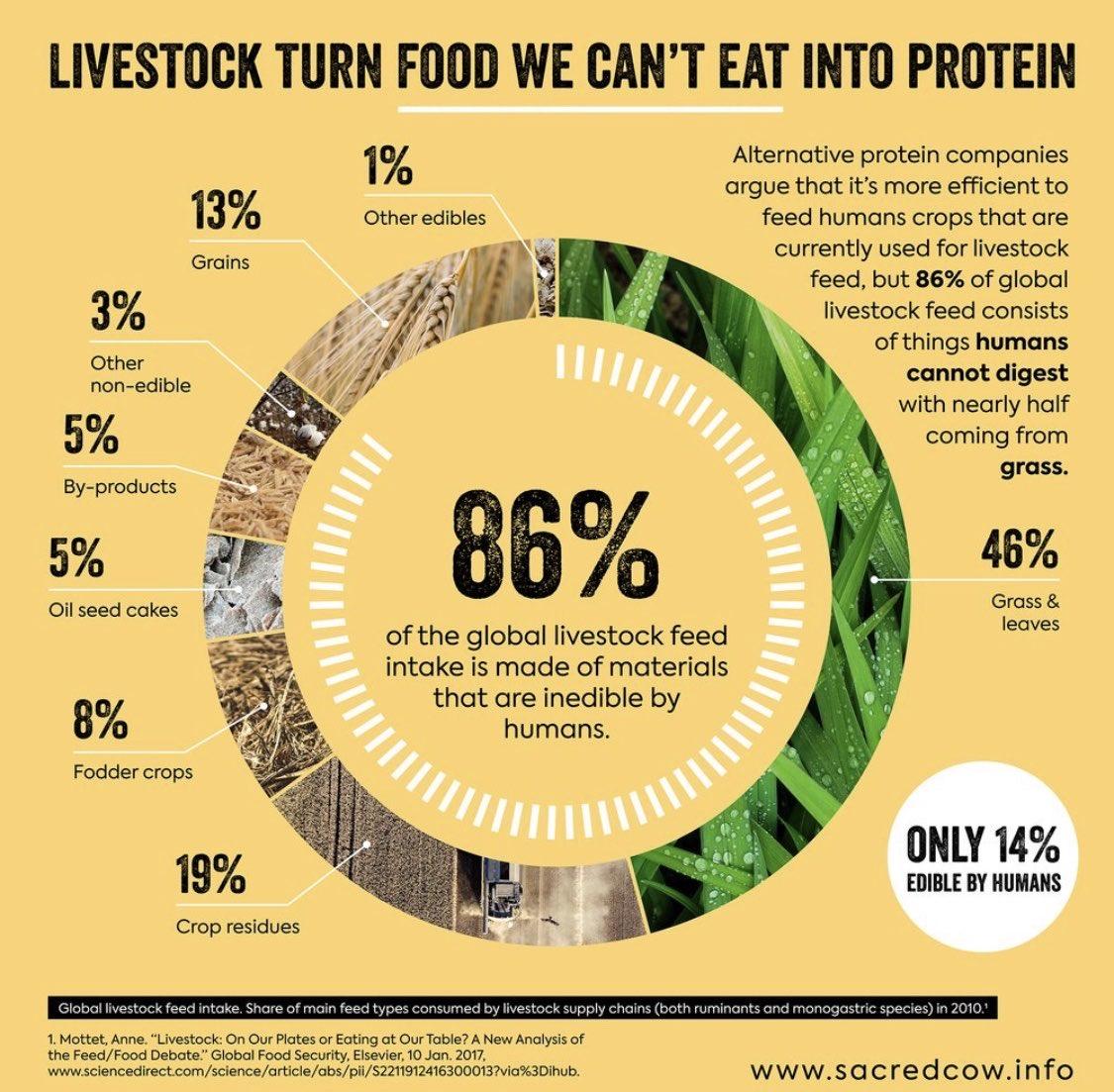 「家畜のエサのせいで食料危機が起こる」説は事実誤認。世界の家畜のエサ60億トンの内、実に86%は人が食...