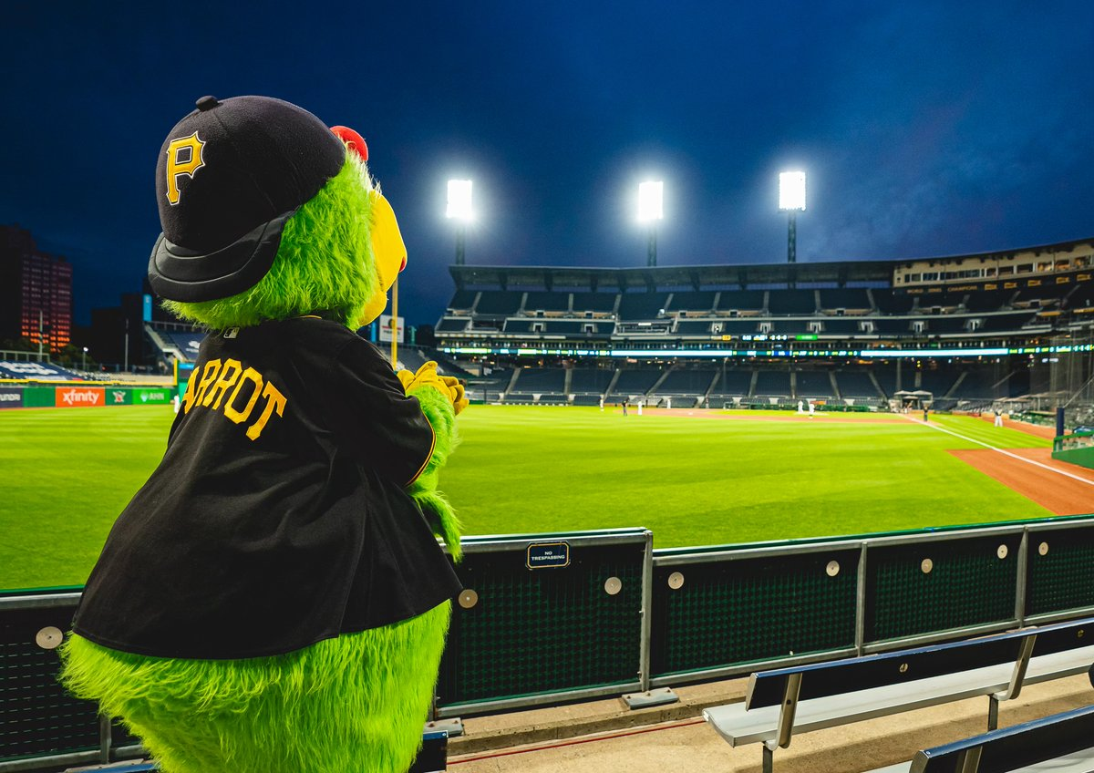 Happy #NationalBirdDay to our favorite bird, @Pirate_Parrot!