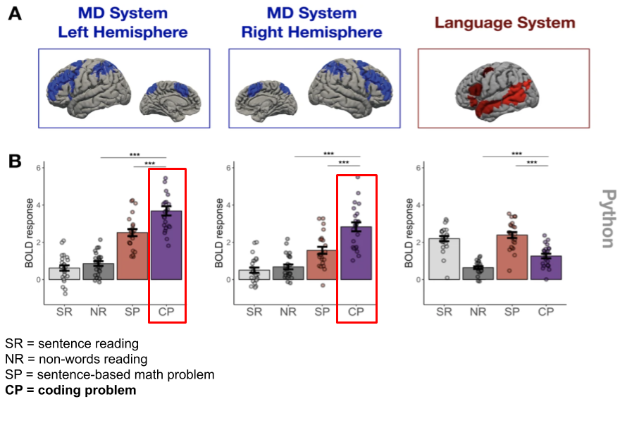 MIT study: reading code activates a much wider range of the brain region used for complex tasks like math problems. Reading code is not the same as language, or math & logic. It seems to be its own thing. Paper: bit.ly/CodersBrain More: bit.ly/CodersBrain1