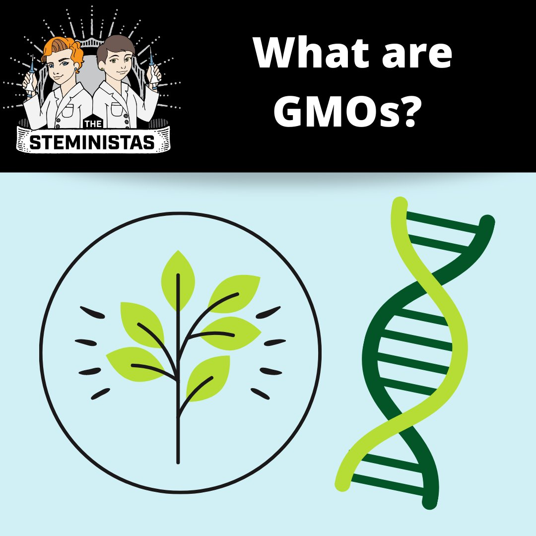 This week were tackling the controversial topic of GMOs with the goal of removing some of the fear surrounding them by explaining how they work! Check out this weeks podcast on wherever podcasts are found.