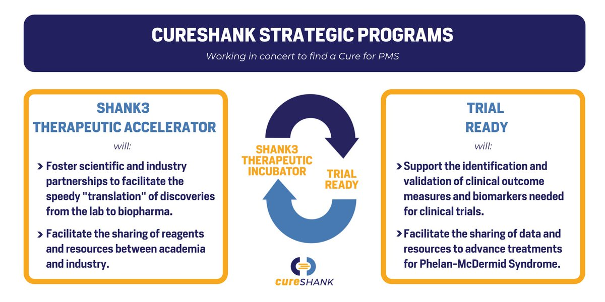 We're excited to announce the launch of CureSHANK's two signature programs to address the major gap areas in drug development for #PhelanMcDermidSyndrome: SHANK3 Therapeutic Accelerator and Trial Ready. Please support CureSHANK by making a #donation: