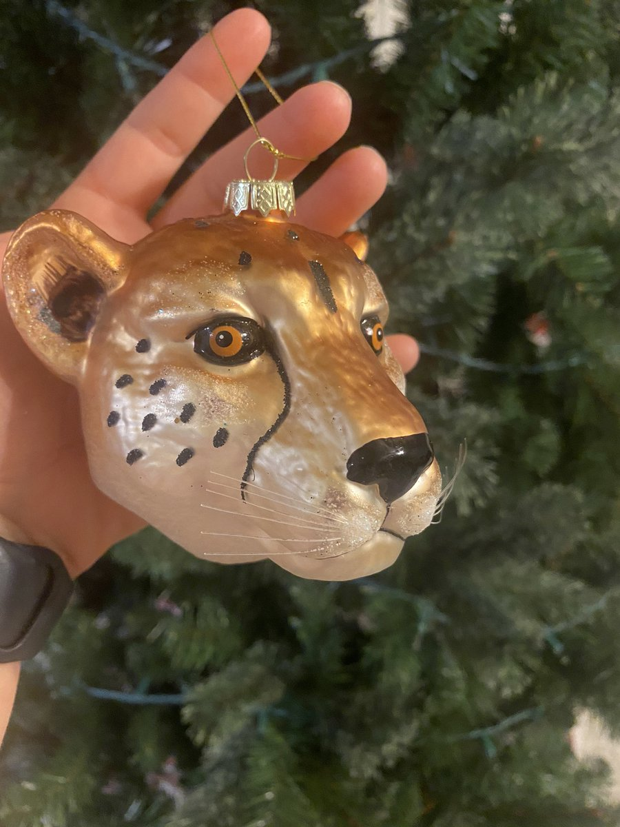 @GlennonDoyle After sharing Untamed with my sister, (then Mom, and every friend I know), my sister gave me this ornament for Christmas. Cheers to all who are discovering their own GD cheetahs after reading. #getuntamed