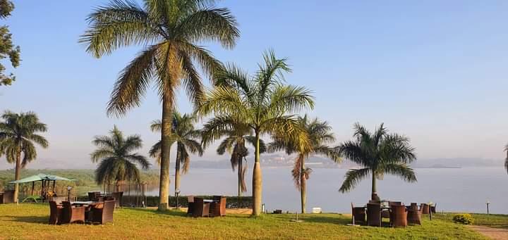 #KaaziBeachResort is another paradise on the shores of Lake Victoria 🥂💚   #VisitUganda #TulambuleUganda