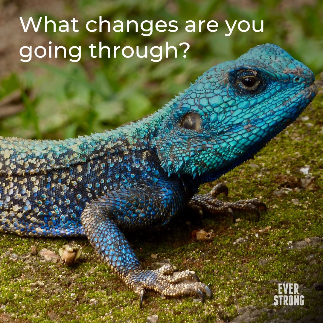 #changes #ChangeWithin