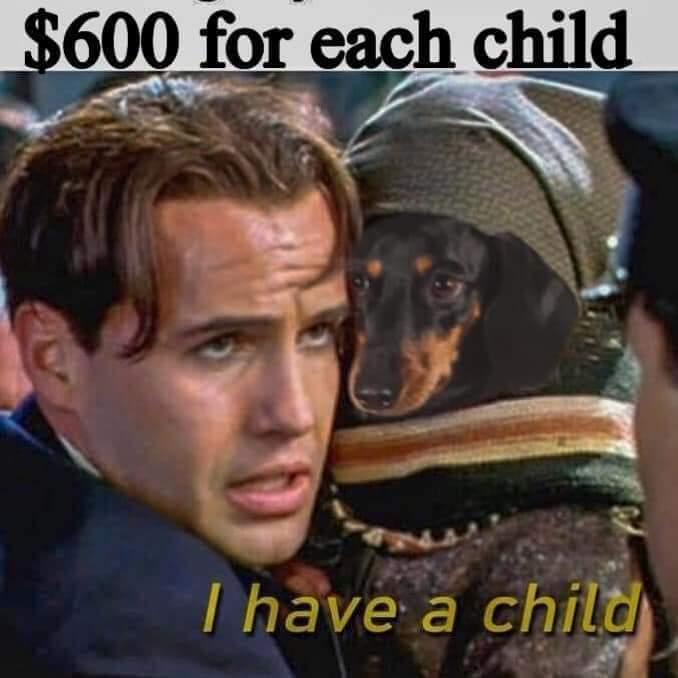 This are too funny..!! 🤣🤣😬 #COVID19 #wednesdaythought #coronavirus #StimulusPackage #StimulusChecks #StimulusBill