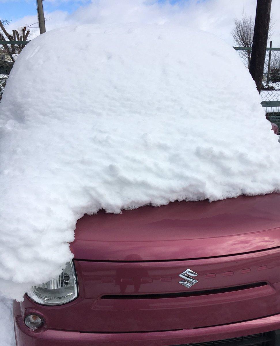 オギャャァァァァ (雪かきできるもの積んでなかったので車にあったエクスカリバーで雪かきしてる)