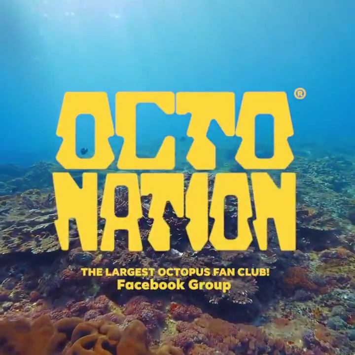 Get ready to be submerged in an other-worldly experience as we uncover the origins of Octonation-The Largest Octopus Fan Club Facebook Group. #MoreTogether