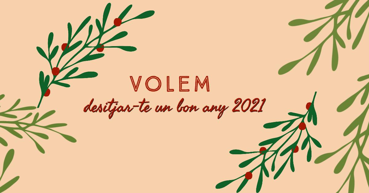 Els Gavines us desitgem un bon any 2021!  Volem tornar a abraçar els nostres amics i amigues i continuar creixent i somiant en el nostre futur. 🚀   Volem seguir comptant amb tu! ✨  #BonAnyNou #AnyNou2021 #BonAnyNou2021 #Feliç2021 #CapdAny #AnyNou