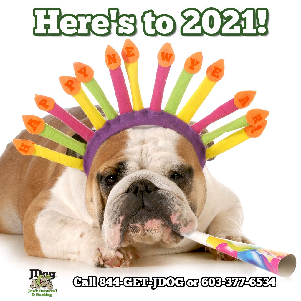 It's almost here! How are you celebrating this year?  #NewYearsEve2021 #JDog