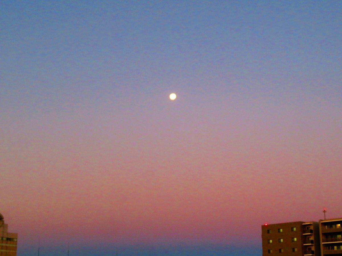 夜明け前の西の空で月が輝いています.