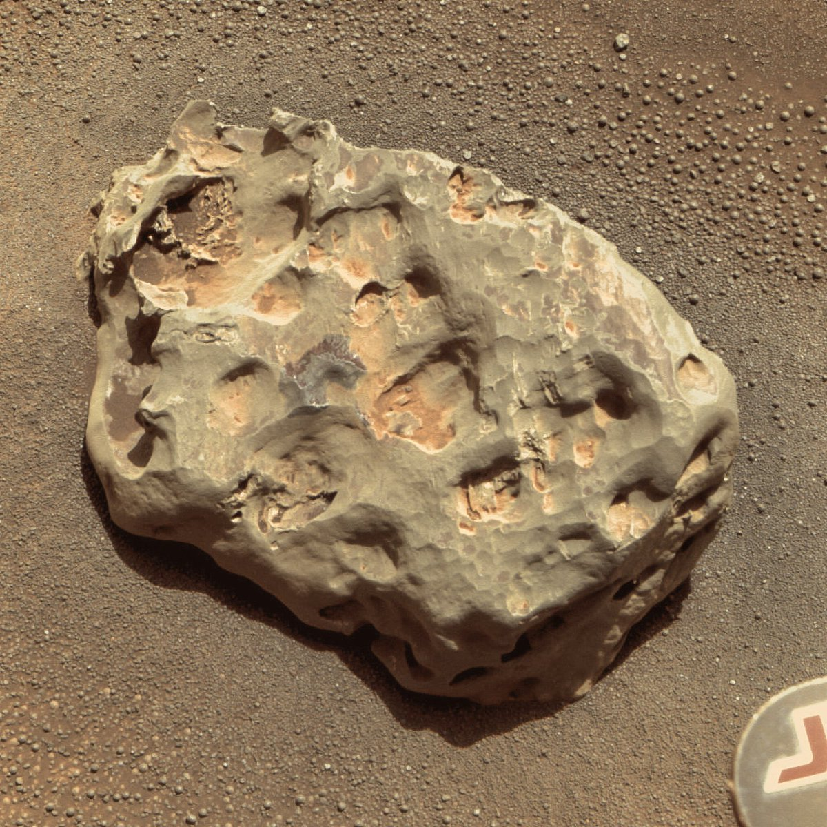 Heat Shield Rock is about 30 cm (1 foot) long and has a mass of about 50 kg (110 lbs). Made of nickel and iron, it's the first meteorite to be discovered on another planet in our Solar System. Opportunity captured this close-up on January 20, 2005.