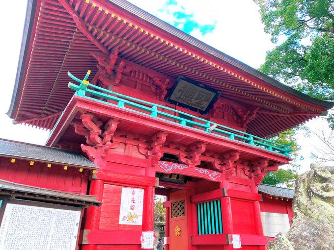 Koi66620207の画像