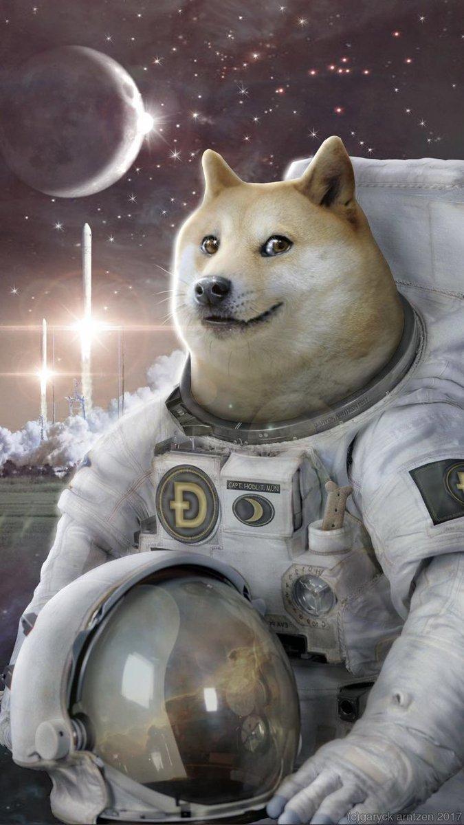 Dojecoin Moon 2021.