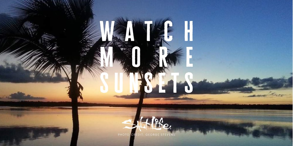 Watch More Sunsets 🌅   #SunsetDreams #LiveSalty