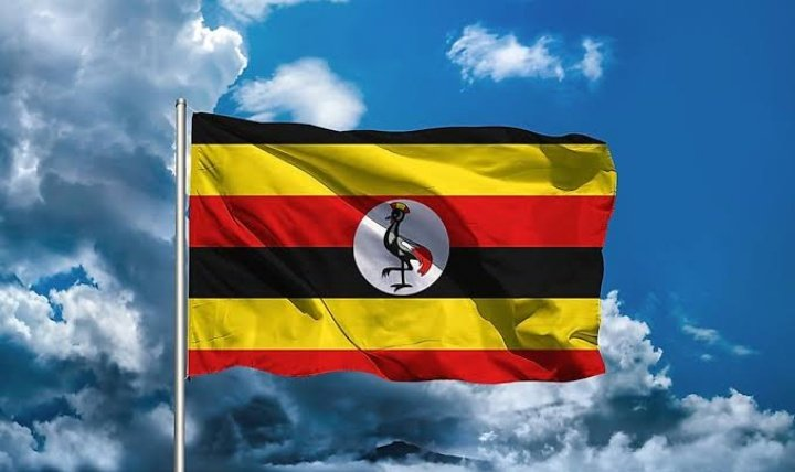 """@NALOWA1 @KagutaMuseveni @Amaka_Ekwo Although @KagutaMuseveni was declared winner of the """"Farce"""" #UgandaElection  However, at least 9 of his Cabinet ministers, including the vice president, were defeated in the parliamentary elections, many losing to @NUP_Ug. Progress! #Uganda   @cobbo3  @entebbe_chief @davvydmoore"""