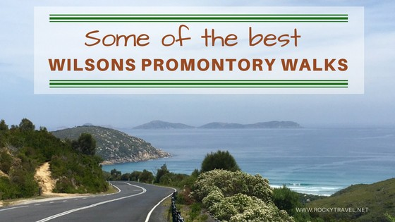 8 of the best Wilsons Promontory Walks for the Nature Lover #StaySafe #StayHome SoloTravel #TravelTips