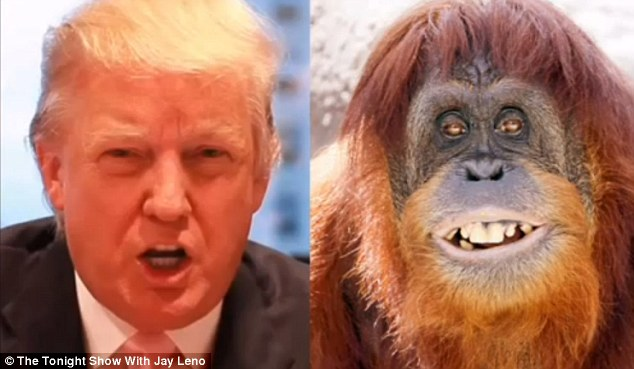 @AmyKremer You need to lose 200lbs. You are as fat as the orange hair orangutan #TrumpBanned Below trump & his daddy