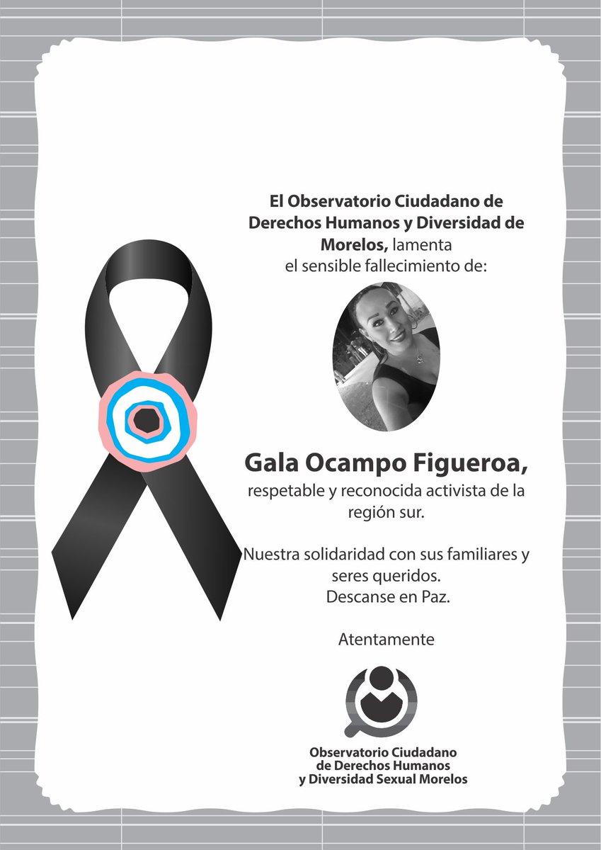 @DerechosMorelos condenamos la muerte de nuestra compañera activista Gala Ocampo Figueroa de la Zona Sur. Con estas acciones en contra de nuestra comunidad nos dejan claro que la violencia y los crímenes de odio en nuestro Estado de Morelos  siguen. 1/2 #EnMorelosNosSiguenMatando