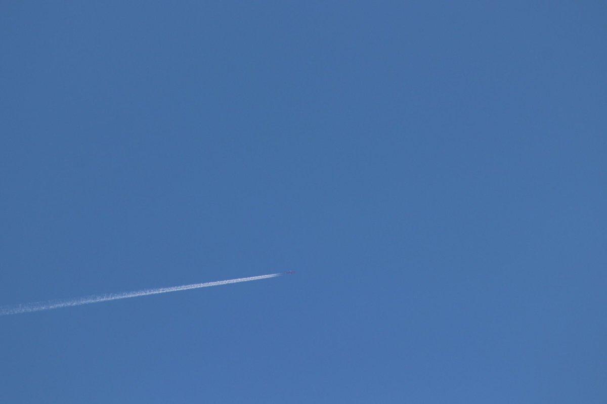Flight: B667 Route: BDL-LAX Airline: @JetBlue  Aircraft: A320-232 Registration: N615JB (NYC Fire Department Livery) 📷: 1/9/2021 #avgeek #travel #jetblue #nyc #windsorlocks #LosAngeles #bouldercity #LasVegas #aviation #aviationlovers #aviationdaily #aviationphotography