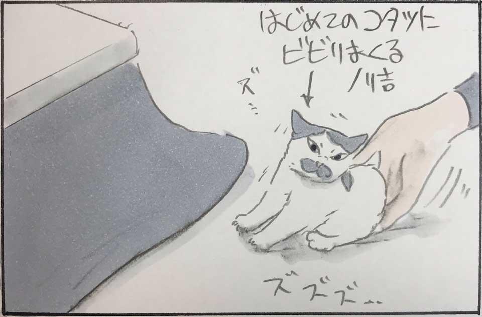 """そうなりますよね!""""はじめてのコタツ""""にビビりまくる元ノラの子猫は…… 愛すべき猫のしぐさや行動を描いた漫画が笑顔になる"""