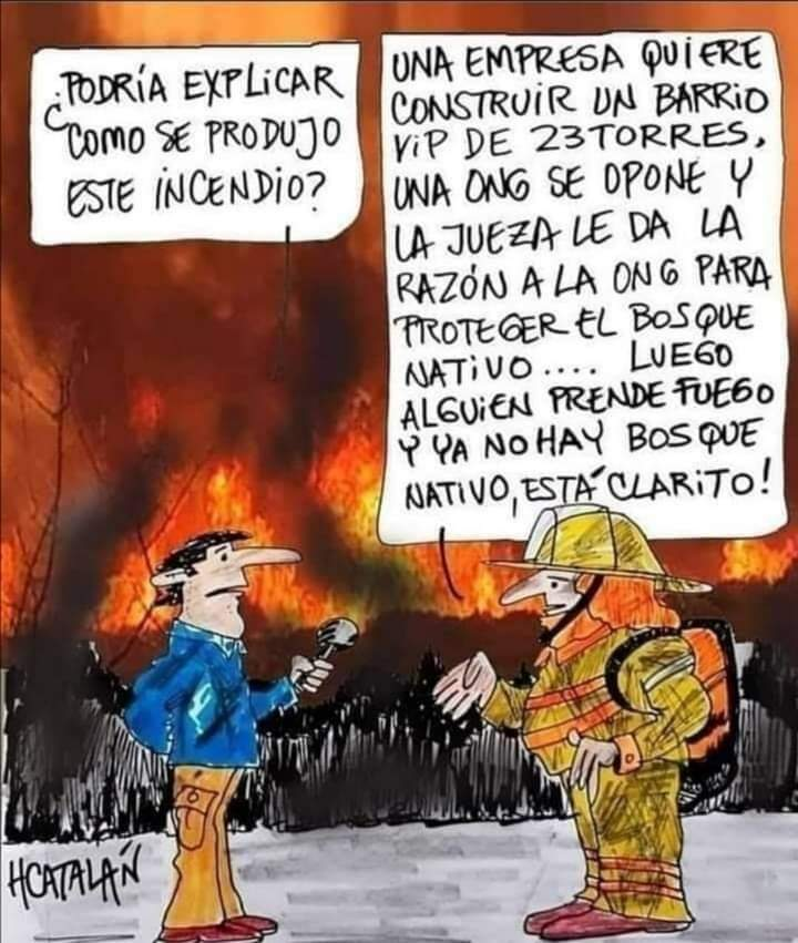 #IncendiosForestales #Quilpué
