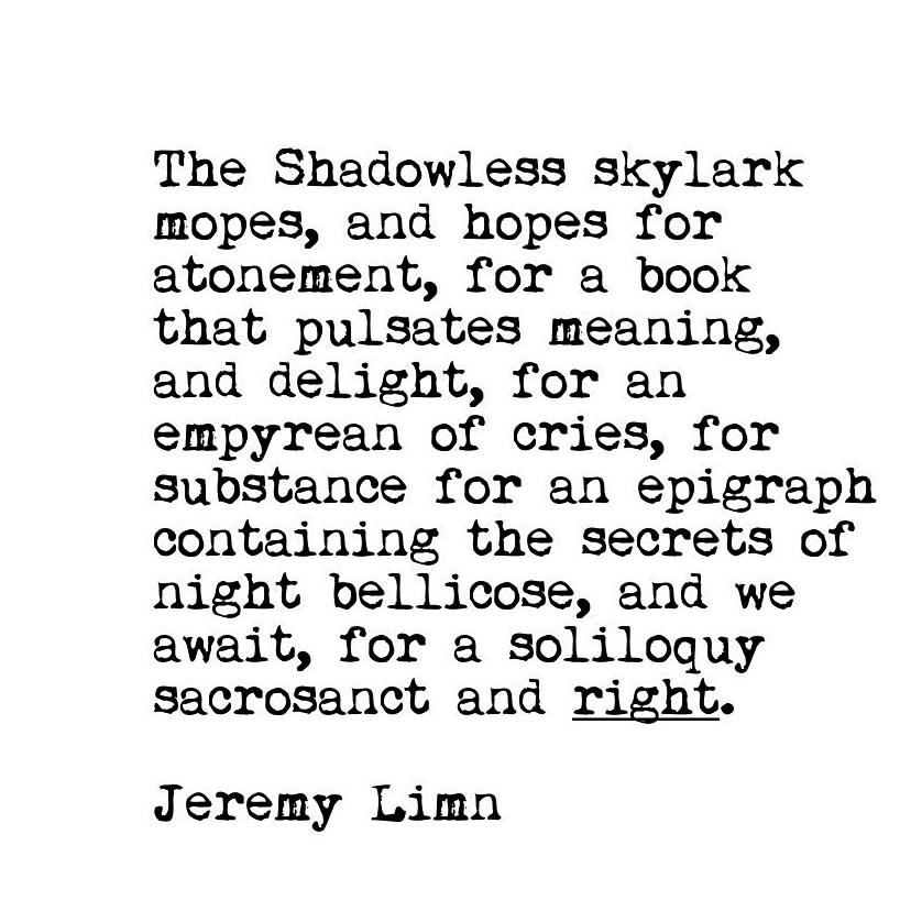 Shadowless Skylark. #creativewriting #poetry #writersofinstagram #poetrycommunity #writing #writingcommunity #poetsofinstagram #writerscommunity #writer