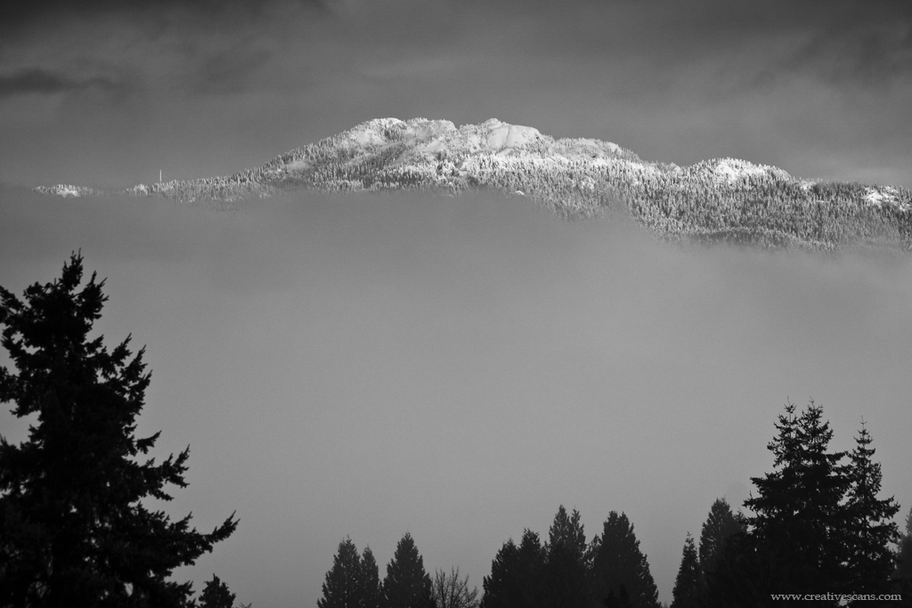 Views of fresh snow through the fog on Seymour Mountain. . . . #explorebc #photos604 #blackandwhite #beautifulbc #pacificnorthwest #life_in_canada #outdoors #shareyourweather #mountain #snow #myportcity #fog