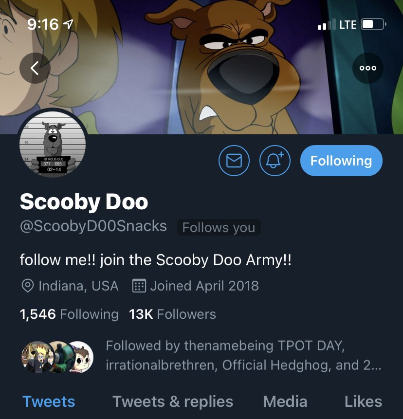 This is the 3rd time I got followed by Scooby