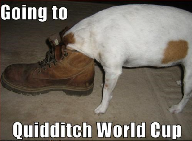 BRB, going to the World Cup. Anyone need Omnioculars? #Quidditch #WorldCup