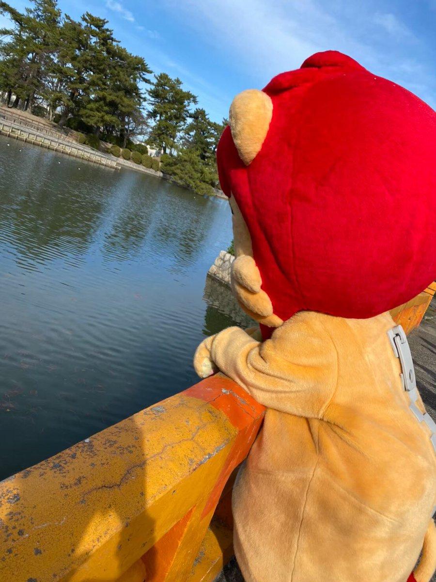 データ 今池 キング 観光