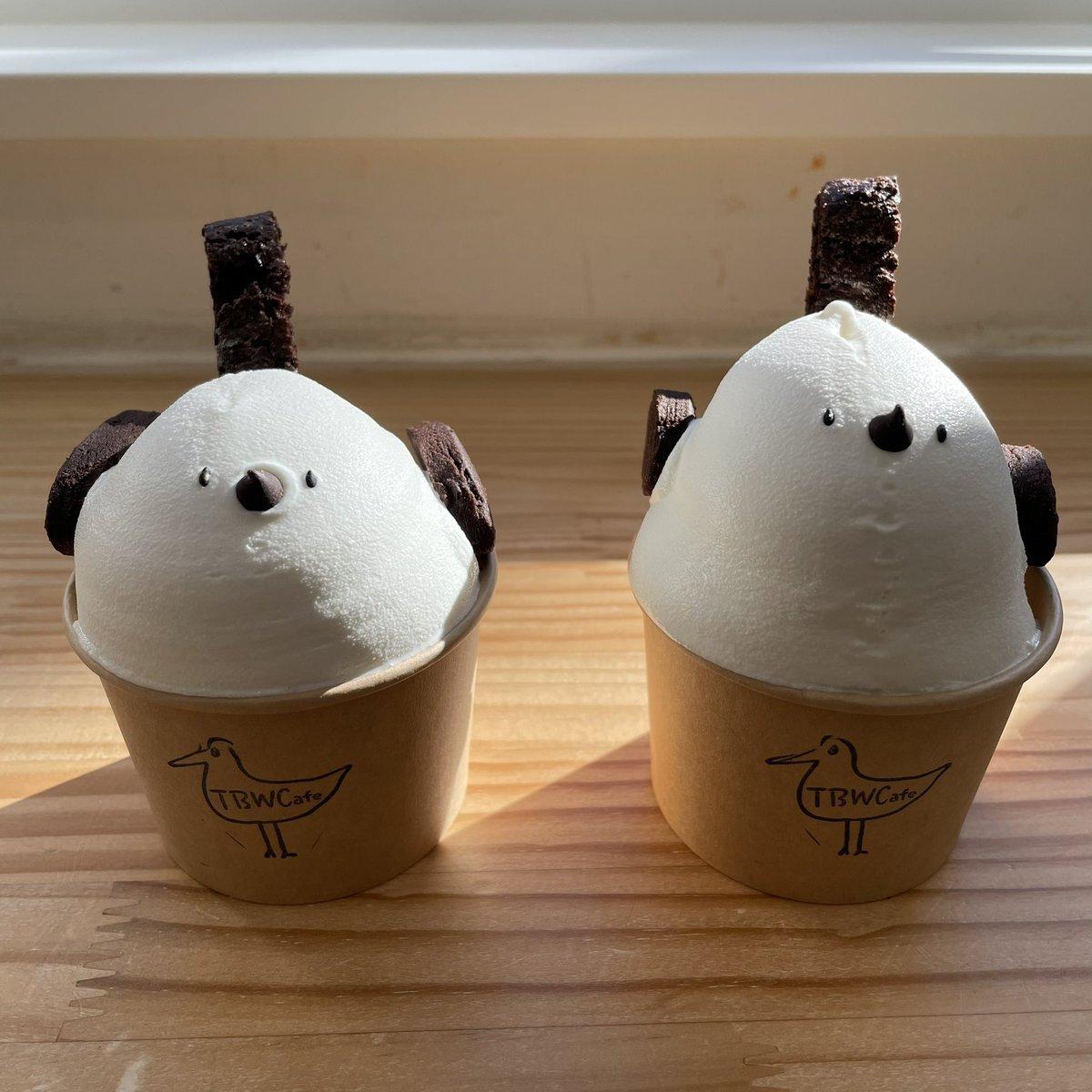 カフェ バード ウォッチング
