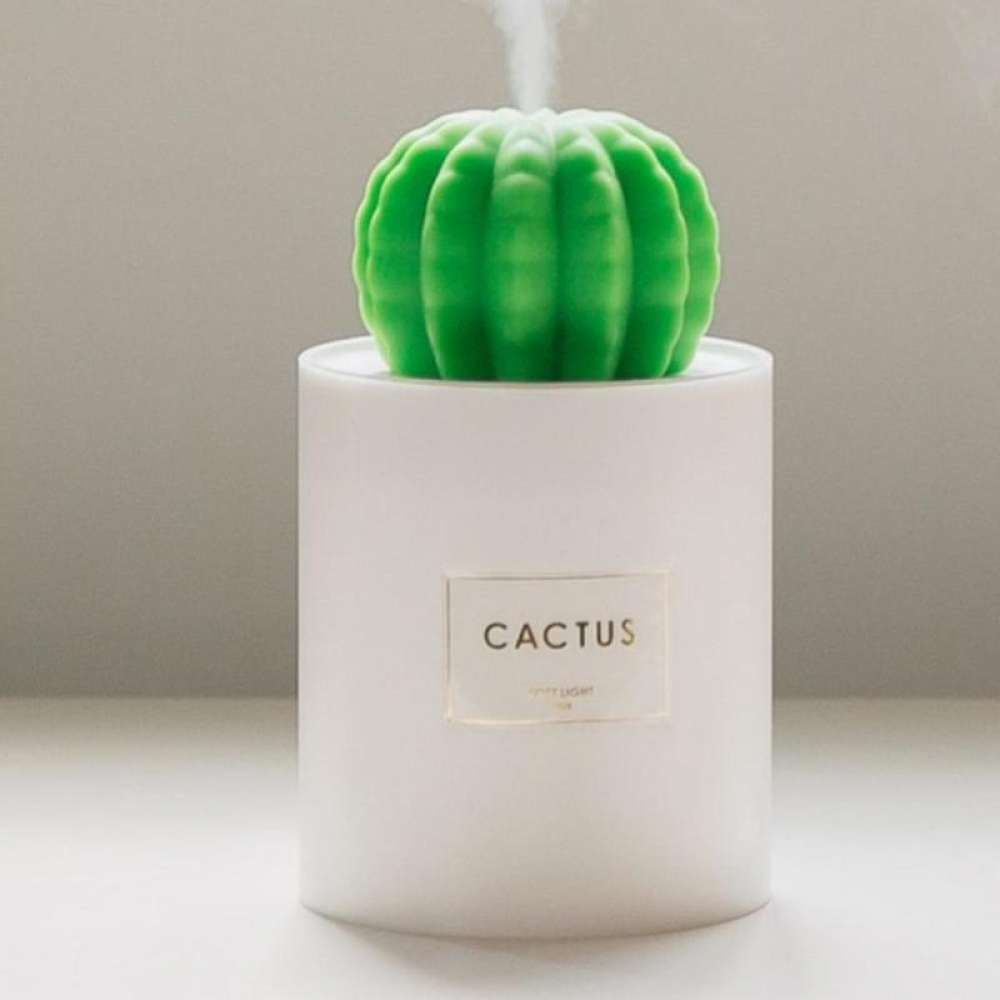 #camera #sports USB Mini Cactus Air Humidifier with Night Light